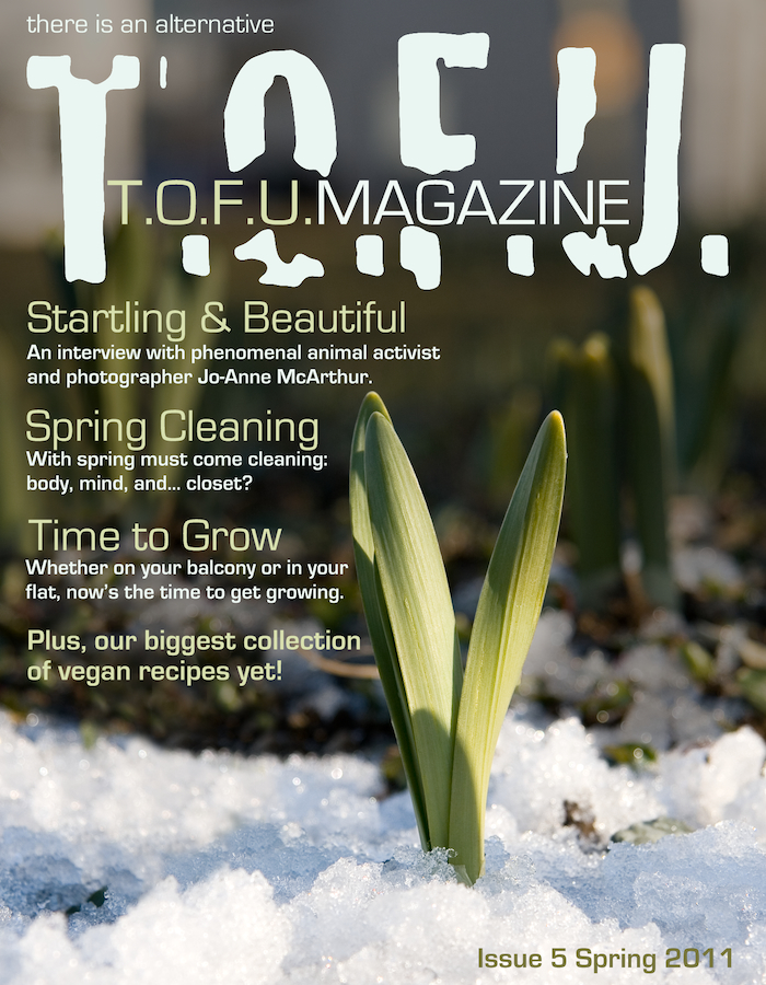 tofu 05 front cover