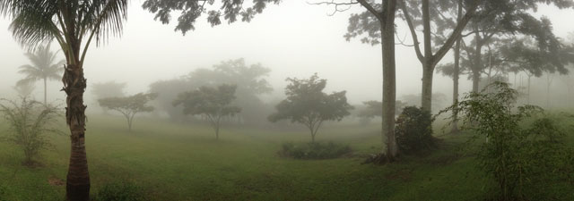 A foggy afternoon at the University for Peace campus