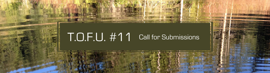 Issue #11 | Call for Submissions