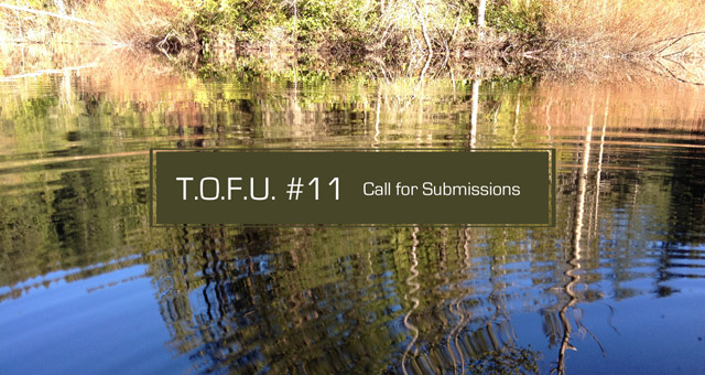 Cover for issue 11 call for submissions