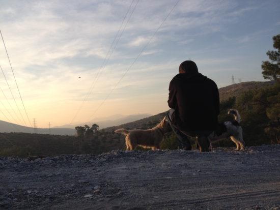Taking in the view with two dogs in Kızılağaç, Turkey