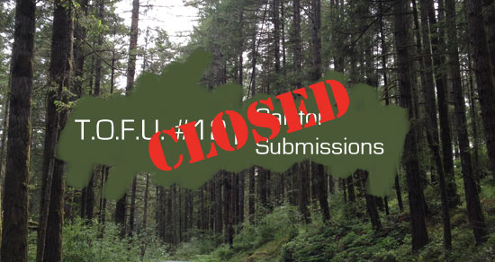 Cover for Issue 12 Submissions Closed