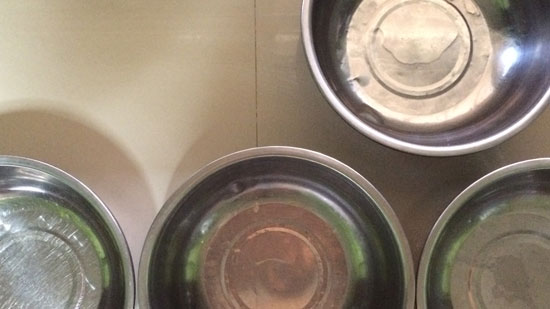 Image contains four silver dog bowls from a birds-eye view. The bowls are on an off-white countertop.